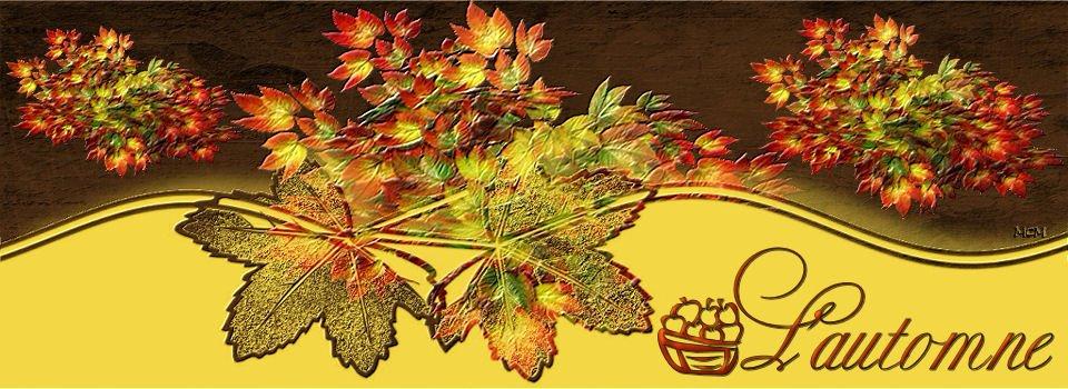 automne2009.jpg